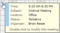AgendaX group calendar box that shows appointment details when hovering over an appointment